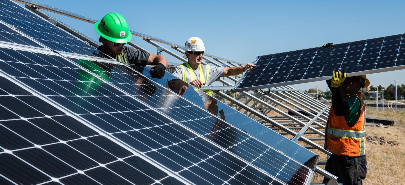 Trabajadores del huerto solar